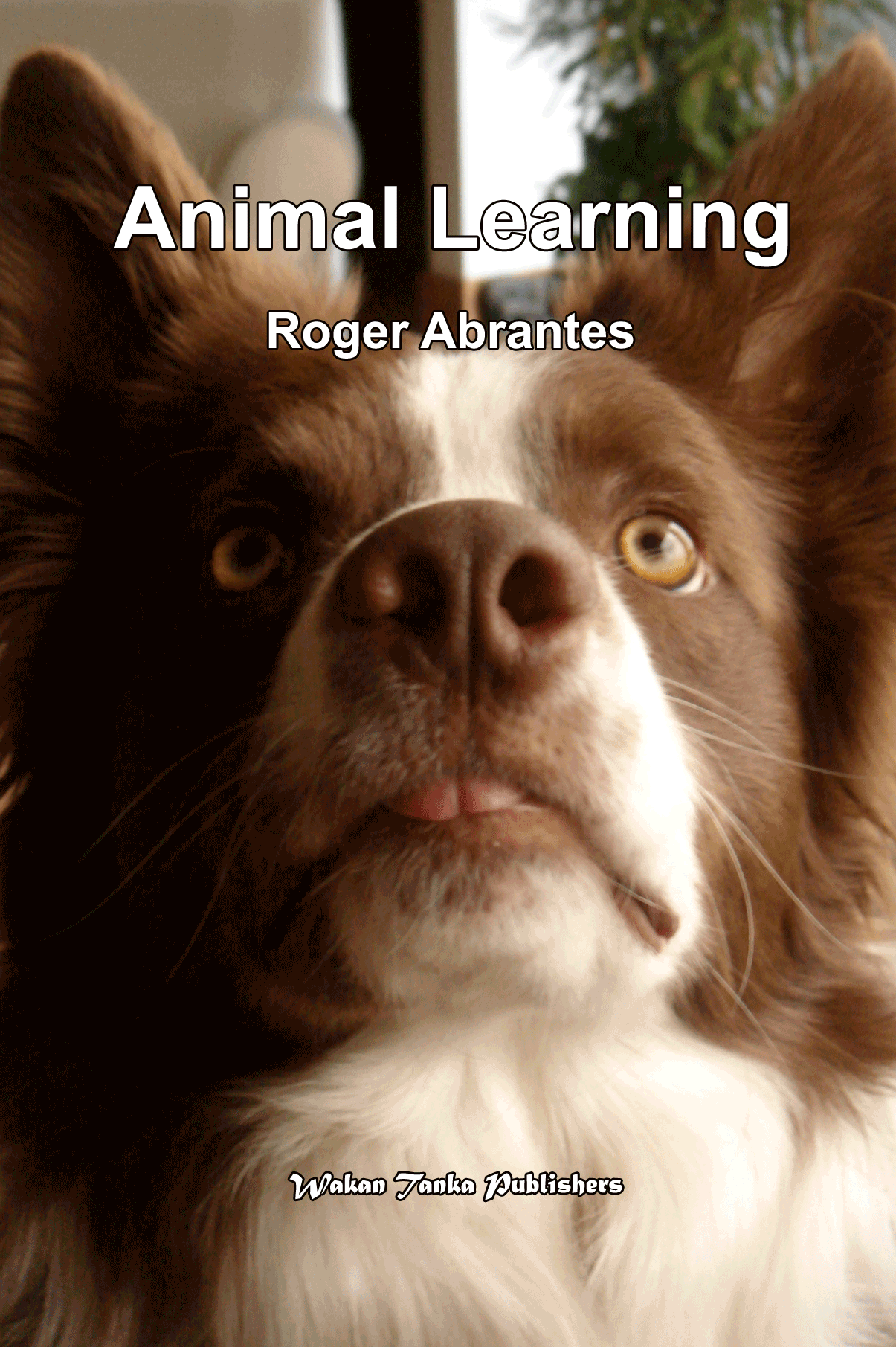 Animal Learning by Roger Abrantes